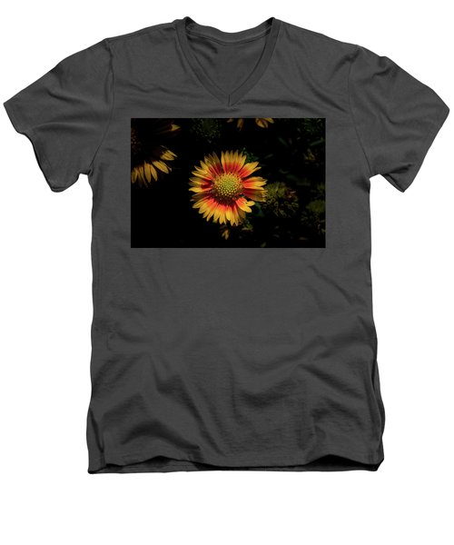 Men's V-Neck T-Shirt featuring the photograph Coneflower by Jay Stockhaus