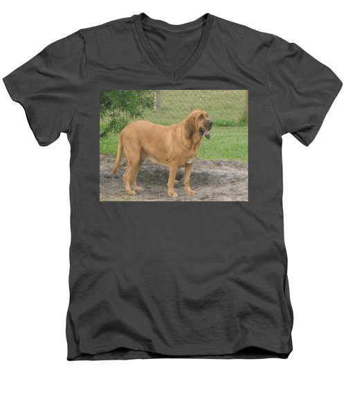Cujo At The Park Men's V-Neck T-Shirt