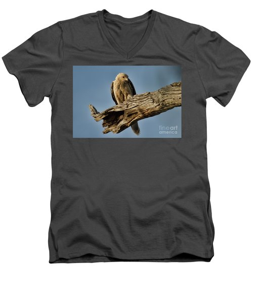 Men's V-Neck T-Shirt featuring the photograph Curious by Douglas Barnard