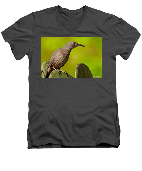 Curve-billed Thrasher On A Prickly Pear Cactus Men's V-Neck T-Shirt