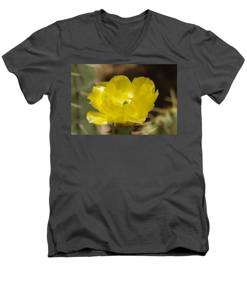 Desert Flower Men's V-Neck T-Shirt