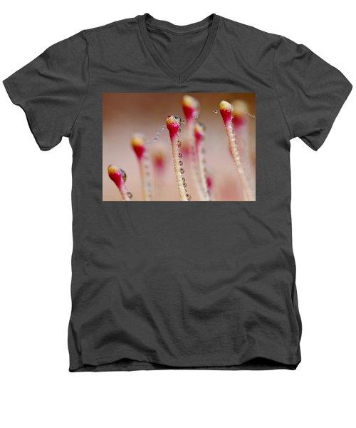 Dew Drops In A Row... Men's V-Neck T-Shirt