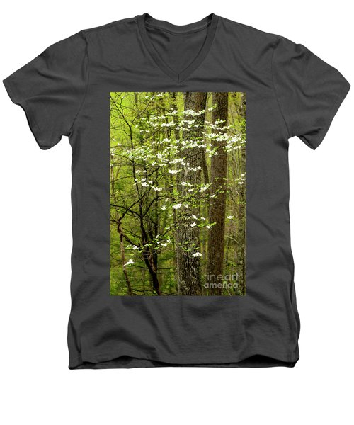 Dogwood Blooming In Forest Men's V-Neck T-Shirt
