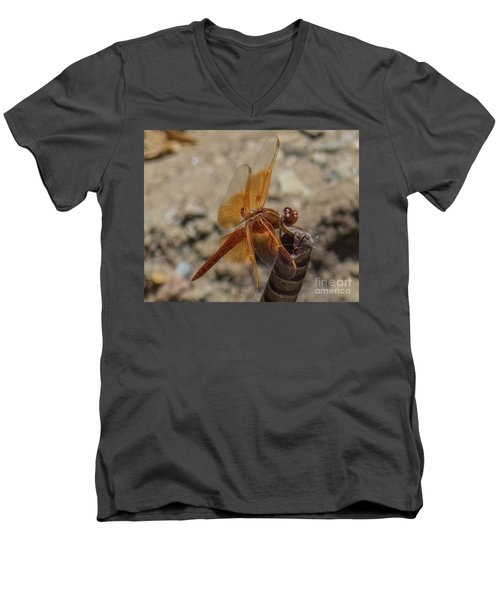Dragonfly 18 Men's V-Neck T-Shirt
