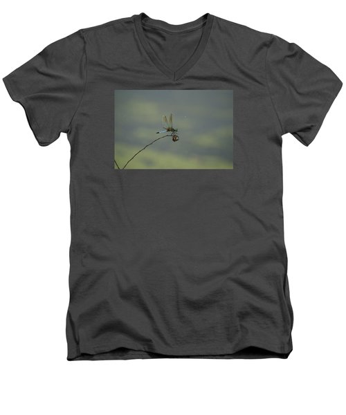 Men's V-Neck T-Shirt featuring the photograph Dragonfly by Heidi Poulin