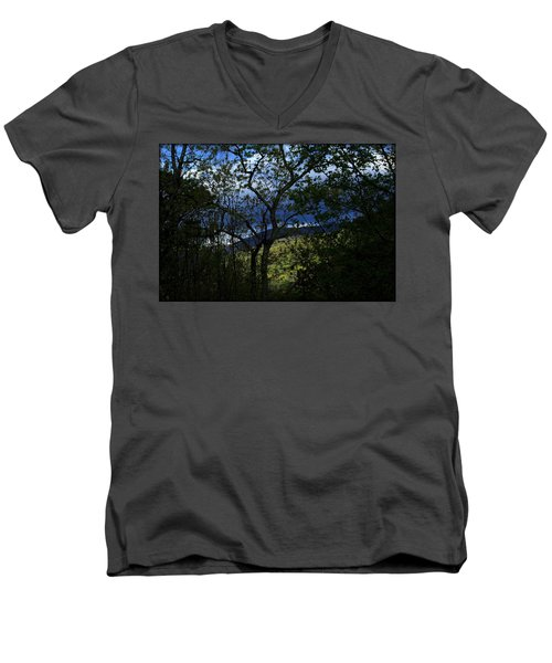 Dusk Men's V-Neck T-Shirt by Tammy Schneider