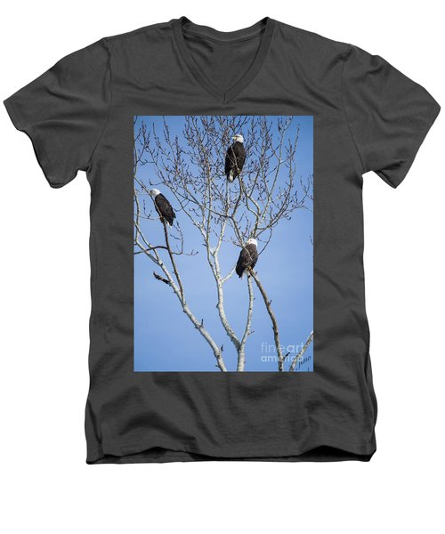 Men's V-Neck T-Shirt featuring the photograph Eagles by Jim  Hatch