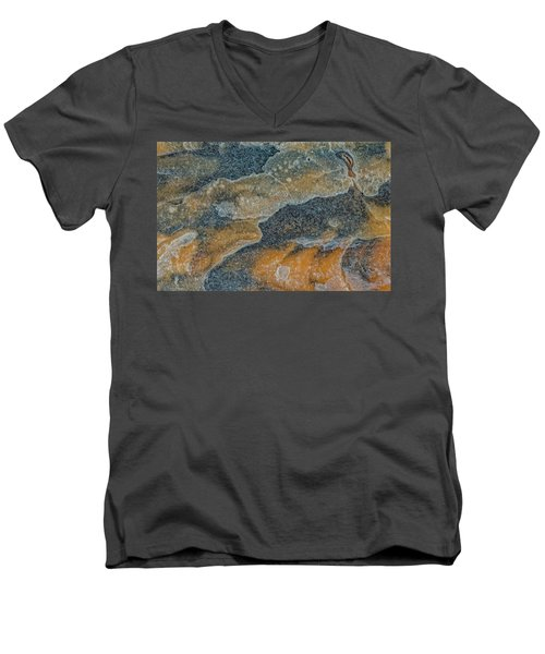 Earth Portrait 283 Men's V-Neck T-Shirt