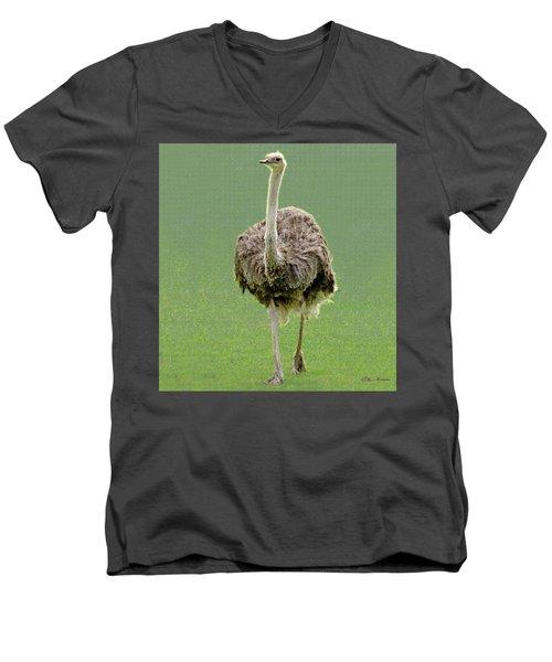 Emu Men's V-Neck T-Shirt