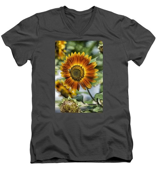 End Of Sunflower Season Men's V-Neck T-Shirt