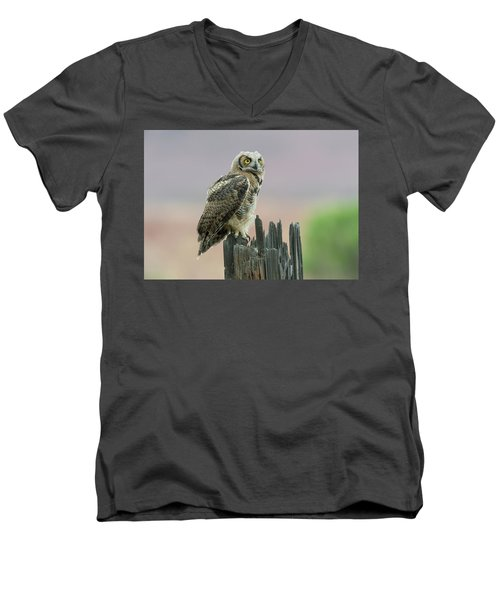 Ethereal Men's V-Neck T-Shirt by Scott Warner