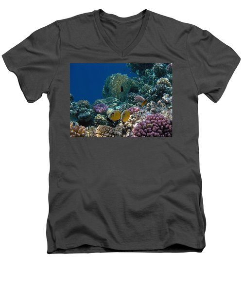 Exquisite Butterflyfish In The Red Sea Men's V-Neck T-Shirt