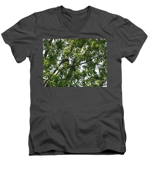 Face The Eagle Men's V-Neck T-Shirt