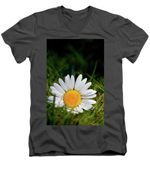 Fallen Daisy Men's V-Neck T-Shirt by Scott Holmes