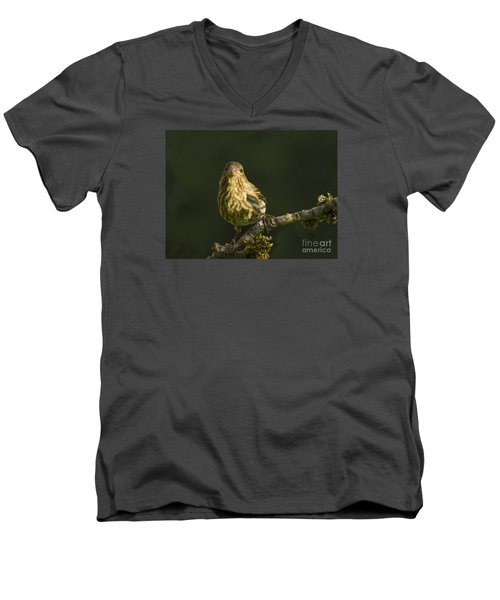 Men's V-Neck T-Shirt featuring the photograph Female House Finch by Inge Riis McDonald