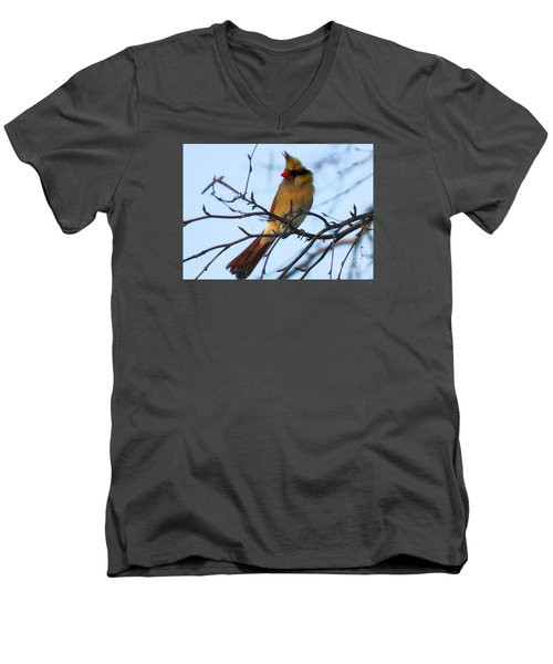 Men's V-Neck T-Shirt featuring the photograph Female Northern Cardinal by Ricky L Jones