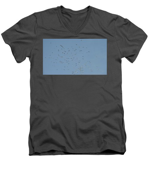 Flock Of Beautiful Migratory Lapwing Birds In Clear Winter Sky Men's V-Neck T-Shirt