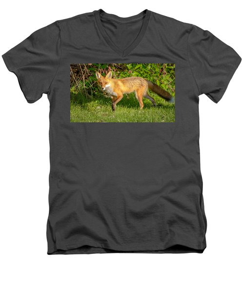 Fox Portrait  Men's V-Neck T-Shirt
