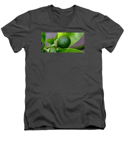 Gapefruit Men's V-Neck T-Shirt