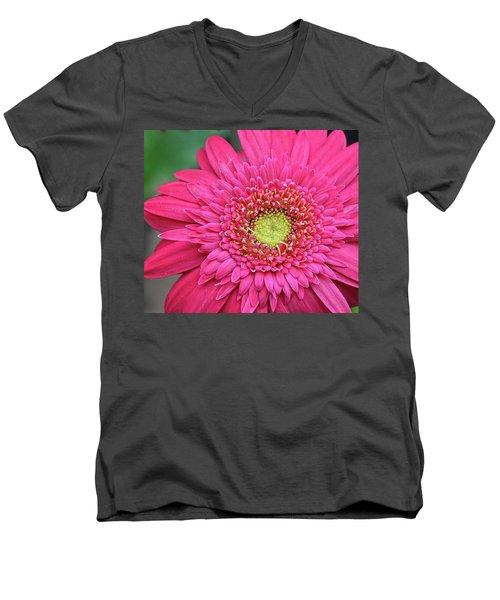 Gerbera Daisy Men's V-Neck T-Shirt by Ronda Ryan