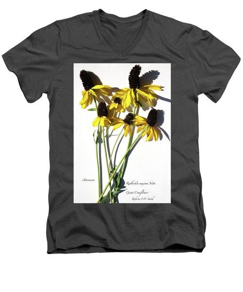 Giant Coneflower Men's V-Neck T-Shirt