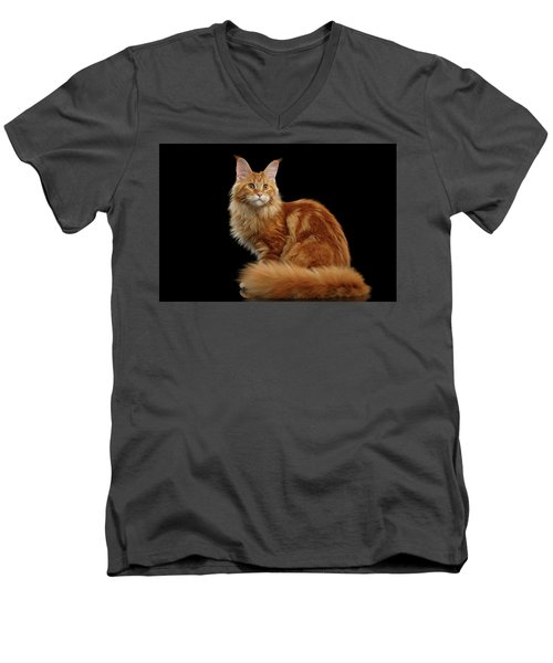 Ginger Maine Coon Cat Isolated On Black Background Men's V-Neck T-Shirt