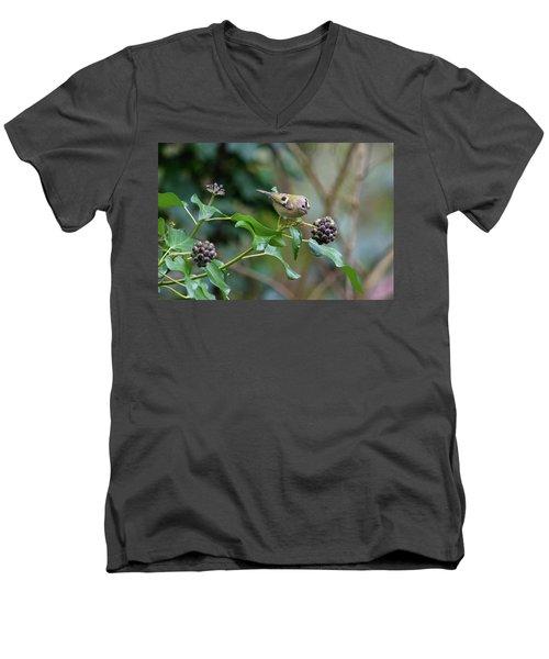 Goldcrest Men's V-Neck T-Shirt