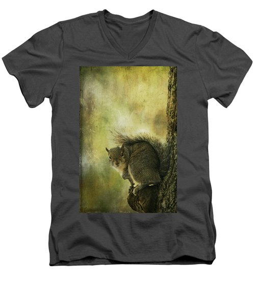 Gray Squirrel Men's V-Neck T-Shirt