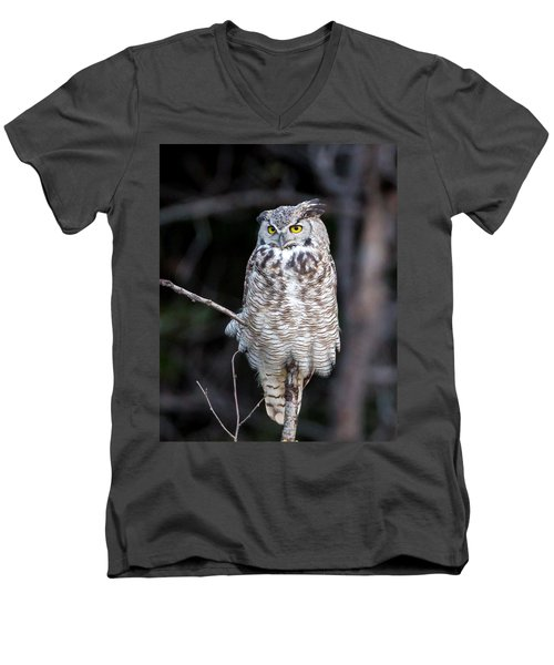Great Horned Owl  Men's V-Neck T-Shirt by Jack Bell