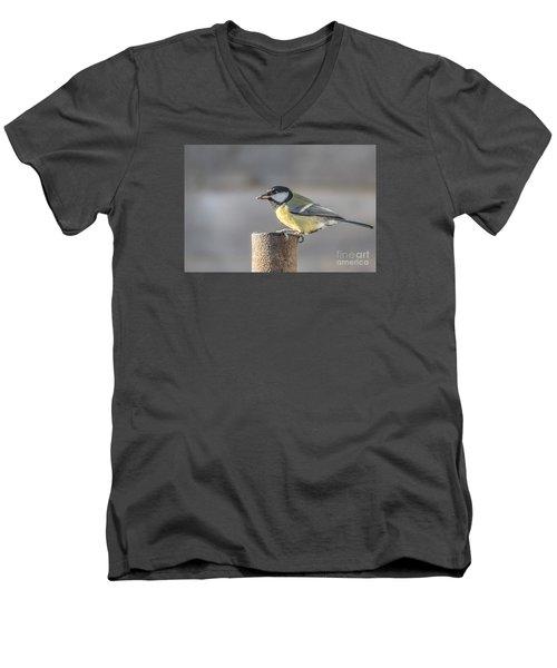 Great Tit On The Tube Men's V-Neck T-Shirt
