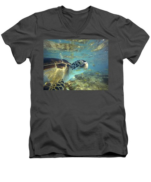 Green Sea Turtle Balicasag Island Men's V-Neck T-Shirt