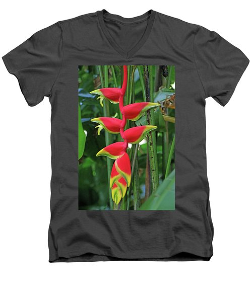 Hawaii Flora Men's V-Neck T-Shirt