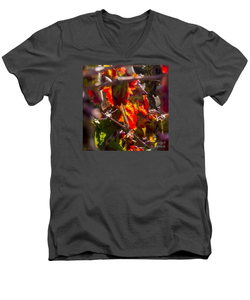 Hot Autumn Colors In The Vineyard 05 Men's V-Neck T-Shirt by Arik Baltinester