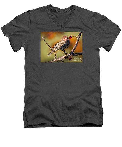 House Finch Men's V-Neck T-Shirt by Ricky L Jones