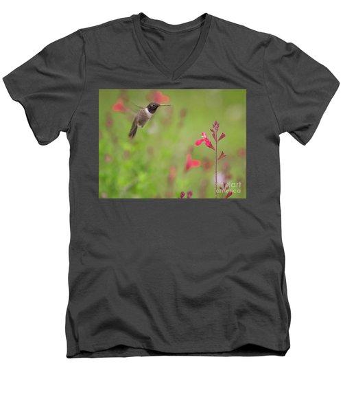 Hummingbird And Sage Men's V-Neck T-Shirt