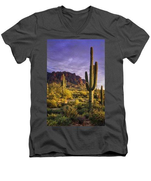 In The Desert Golden Hour  Men's V-Neck T-Shirt