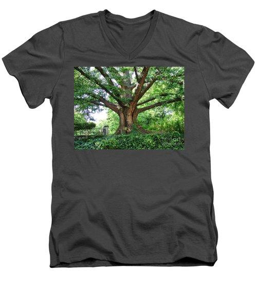 Inwood Ginkgo  Men's V-Neck T-Shirt