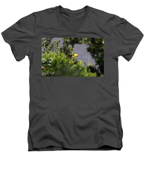 Is It Safe To Come Out? Men's V-Neck T-Shirt
