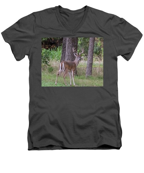 Large Buck Men's V-Neck T-Shirt