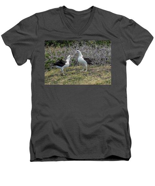Laysan Albatross Hawaii #2 Men's V-Neck T-Shirt