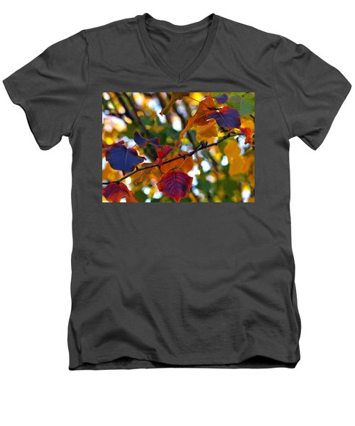 Leaves Of Autumn Men's V-Neck T-Shirt