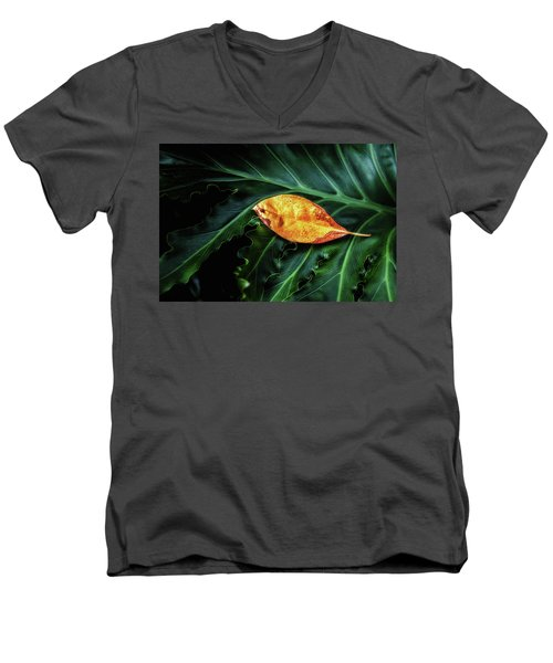 Men's V-Neck T-Shirt featuring the photograph Life Cycle Still Life by Tom Mc Nemar