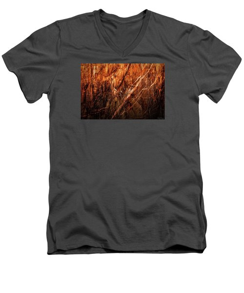 Light And Shadow Men's V-Neck T-Shirt by Rick Furmanek