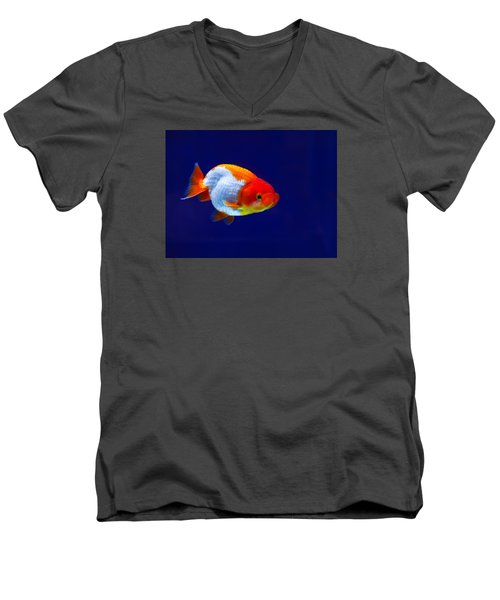 Lion Head Goldfish 4 Men's V-Neck T-Shirt