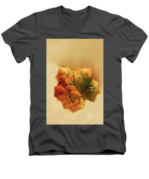 Little Leif Dish Men's V-Neck T-Shirt by Itzhak Richter