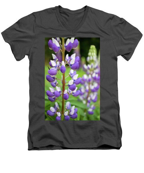 Men's V-Neck T-Shirt featuring the photograph Lupine Blossom by Robert Clifford