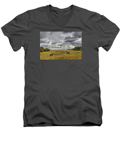 Maryland Pastures Men's V-Neck T-Shirt