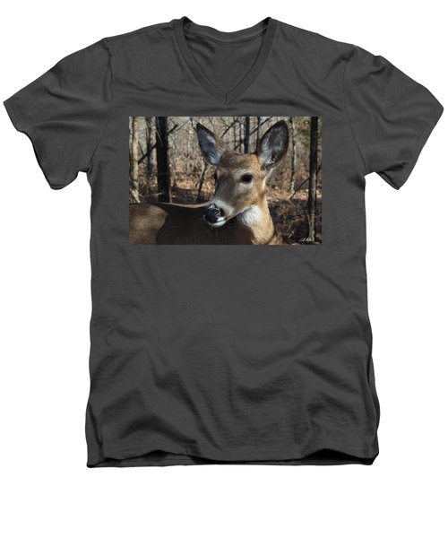 Mr. Cool Men's V-Neck T-Shirt by Bill Stephens