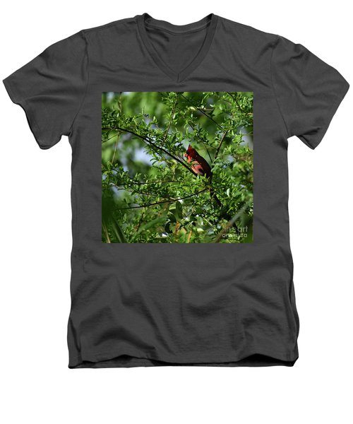 Men's V-Neck T-Shirt featuring the photograph Mr Red by Skip Willits