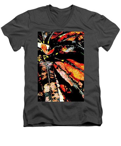 Natures Gift  Two Men's V-Neck T-Shirt